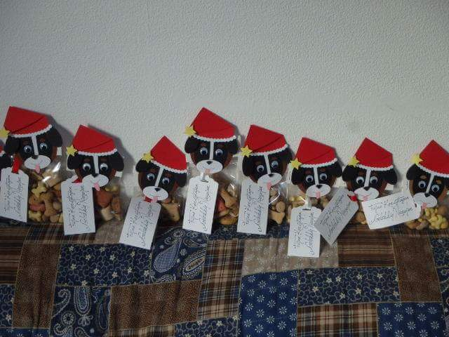 """Hondenuitlaatservice """"Bernertje"""" ?We wensen iedereen een gezegende advents- en kersttijd en een voorspoedig 2016!! ?? HUS Bernertje"""