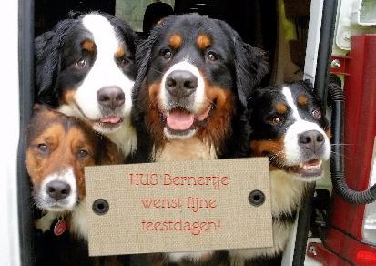 """Hondenuitlaatservice """"Bernertje"""" Bedankt voor een geweldig 2015!!! Ik ben erg blij met mijn werk en al mijn trouwe klanten en """"doggies""""... Fijne feestdagen en een voorspoedig nieuw wandeljaar.. ...op naar 2016!"""